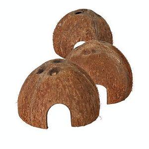 Casita de coco para hámsters