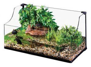 Acuario para tortugas de agua