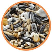 Mezcla de semillas para guacamayos