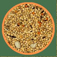 Semillas para periquitos