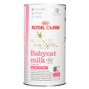 Leche maternizada gatos Royal Canin