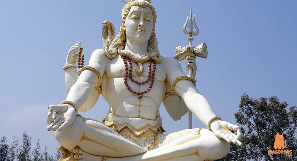 Animales sagrados de la India